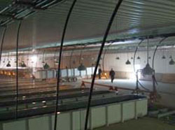 Dorion Fish Hatchery Expansion