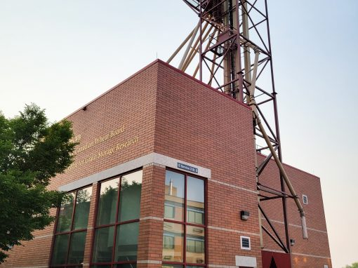 Centre for Grain Storage Research